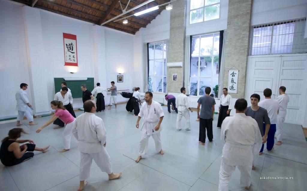 curso-introduccion-iniciacion-aikido-valencia-12