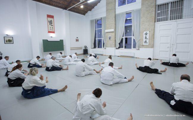aikido-con-iván-rigual-sensei-en-sintagma-01