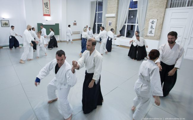 aikido-con-iván-rigual-sensei-en-sintagma-02