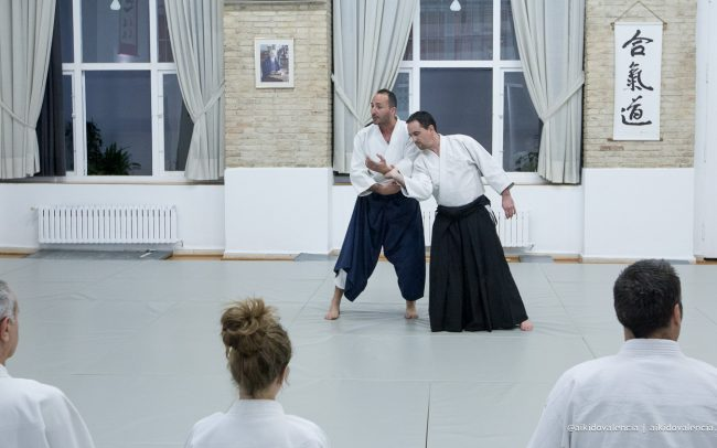 aikido-con-iván-rigual-sensei-en-sintagma-03
