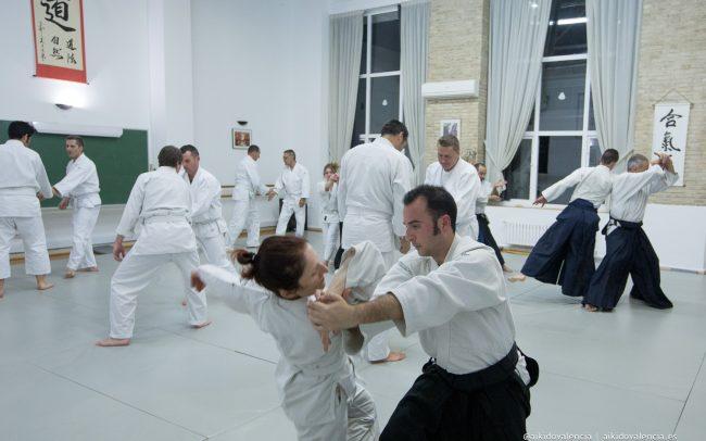 aikido-con-iván-rigual-sensei-en-sintagma-07