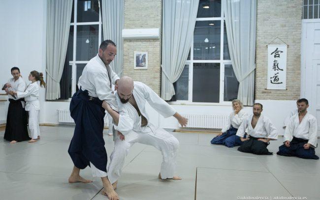 aikido-con-iván-rigual-sensei-en-sintagma-10