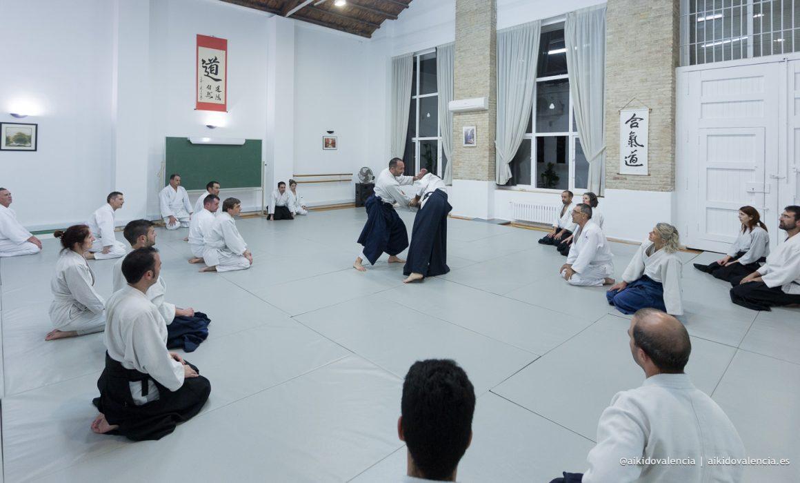aikido-con-iván-rigual-sensei-en-sintagma-14