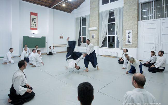 aikido-con-iván-rigual-sensei-en-sintagma-15