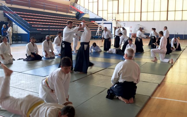 aikido-summer-camp-2017-04