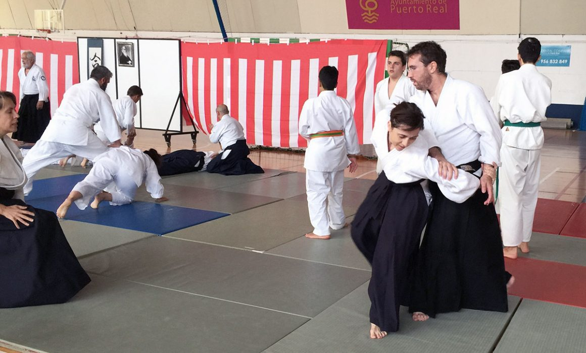 aikido-summer-camp-2017-05