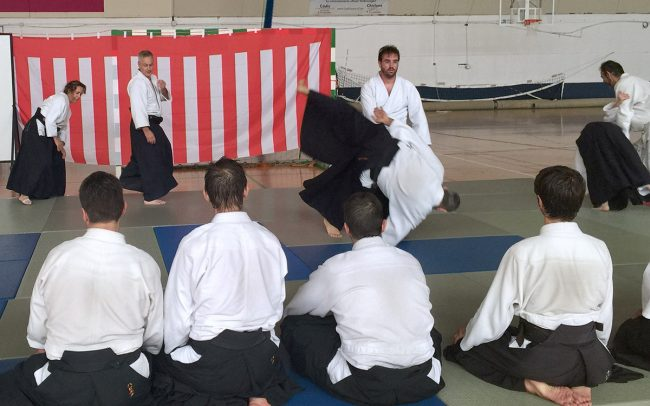 aikido-summer-camp-2017-06