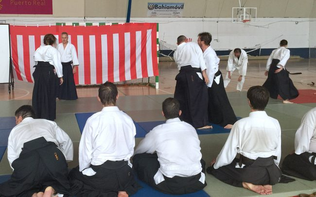 aikido-summer-camp-2017-07