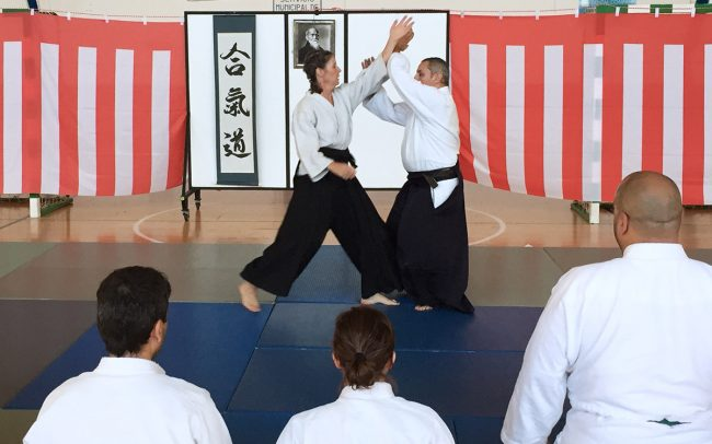 aikido-summer-camp-2017-08