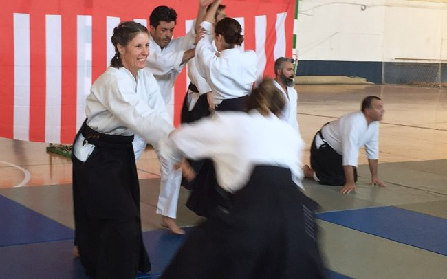 aikido-summer-camp-2017-09