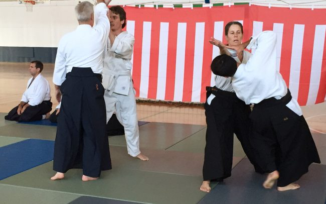 aikido-summer-camp-2017-10