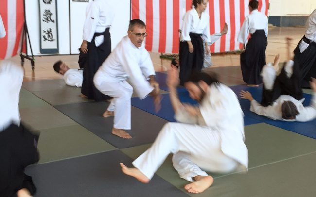 aikido-summer-camp-2017-11