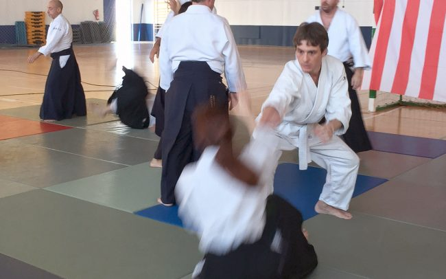 aikido-summer-camp-2017-12