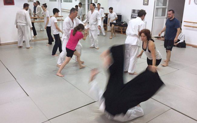 curso-intensivo-intro-aikido